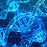 Contribuye la genética a la aparición de caries