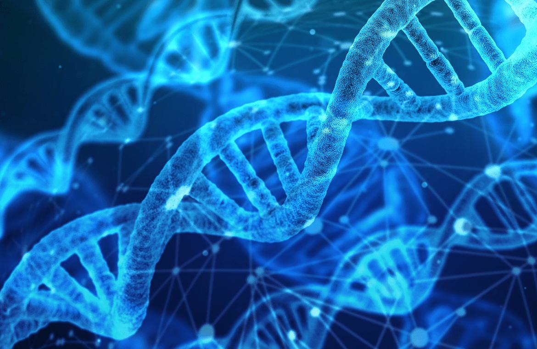 Contribuye-la-genética-a-la-aparición-de-caries.png